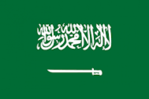 Saudi Arabia Assigns New Foreign and Transport Ministers