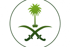 Saudi Arabia Establishes Ministries, Appoints New Ministers